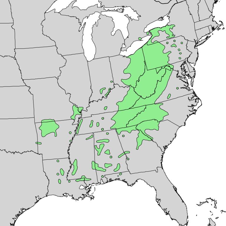 Magnolia-acuminata-range-map