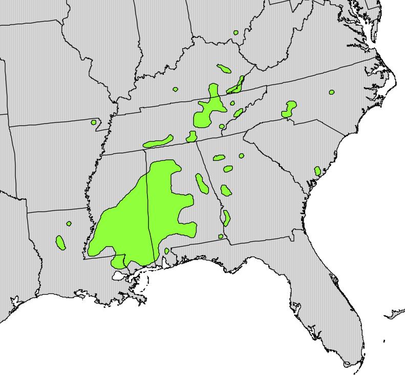 Magnolia_macrophylla_range_map