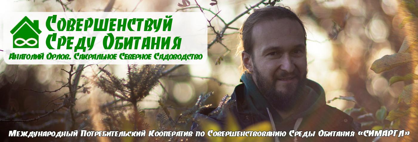 Совершенствуй Среду Обитания | Анатолий Орлов. Сакральное северное садоводство